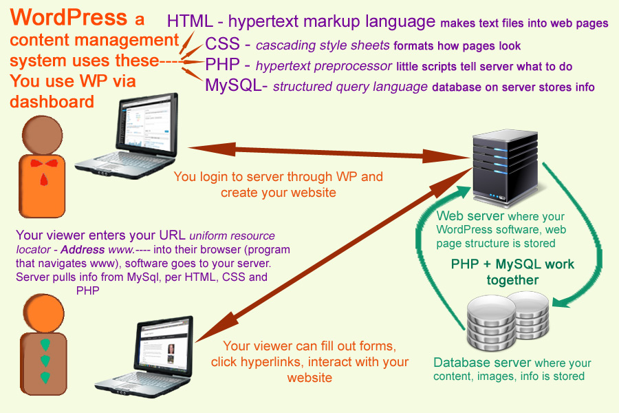 WordPress with HTML, CSS, PHP and MySQL